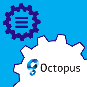 Start activatie CCV Shop - Octopus